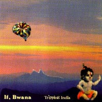 If, Bwana (Al Margolis) - Tripping India